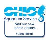 Aquarium and Pond Photos - Ohio Aquarium Service